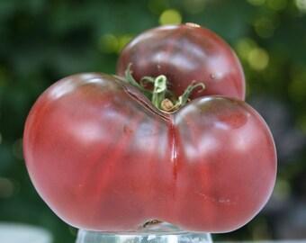 SALE Cherokee Purple Heirloom Beefsteak Slicer Tomato Rare Seeds