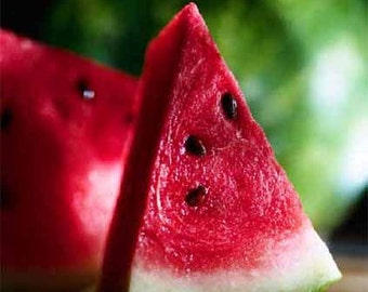 FREE SHIPPING Organic Heirloom Sugar Baby Watermelon Seeds for USA residents
