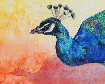 "Peacock portrait. Beautifully rendered and colored. A decorative CERAMIC TILE wall  art  - 10"" x 8"".  Free U.S. shipping."