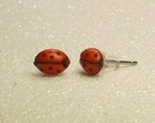 Vintage Tiny Red Ladybug Stud Earrings