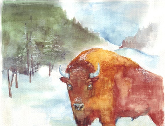 Buffalo with Blue Eyes in Snow