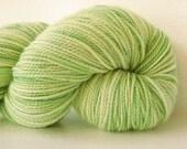 Sock Yarn Hand dyed Superwash Merino/Nylon - Kiwi