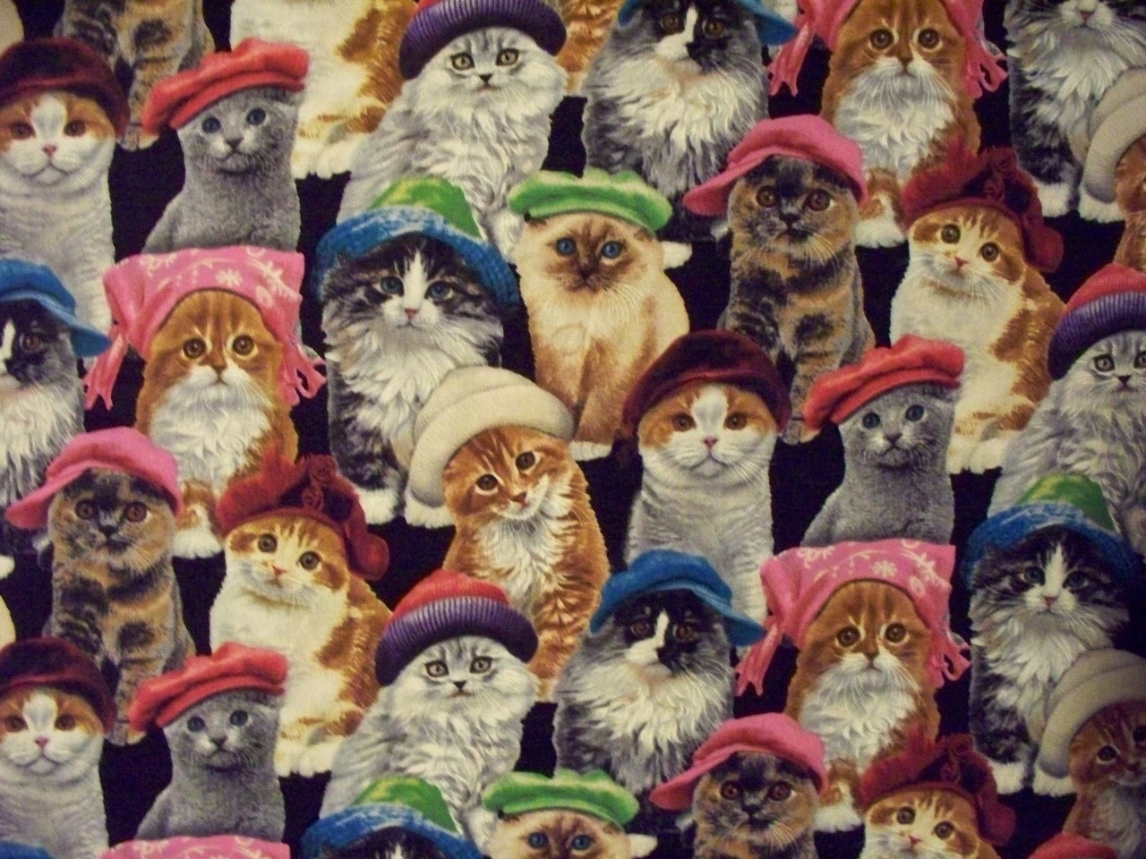 Fabric With Cats On Uk