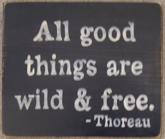 All Good Things Are Wild And Free Thoreau Quote Sign Plaque Wood HP
