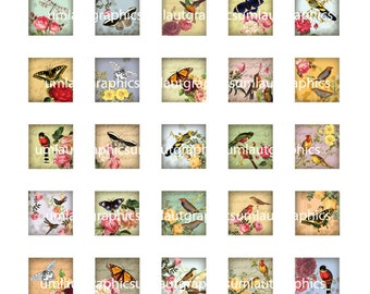Digital Collage Sheet 1 Inch x 1 Inch Roses Butterflies and Birds