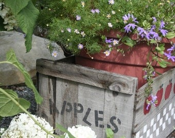 "Old wooden apple crate in garden -  5 x 7"" color print"