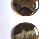 Pietersite, 2 cabochons, fossilized wood. AAA