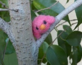 Little needle felted felted bird