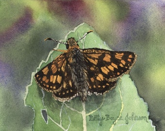 Moth watercolour painting