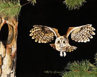 Owl in flight watercolour painting