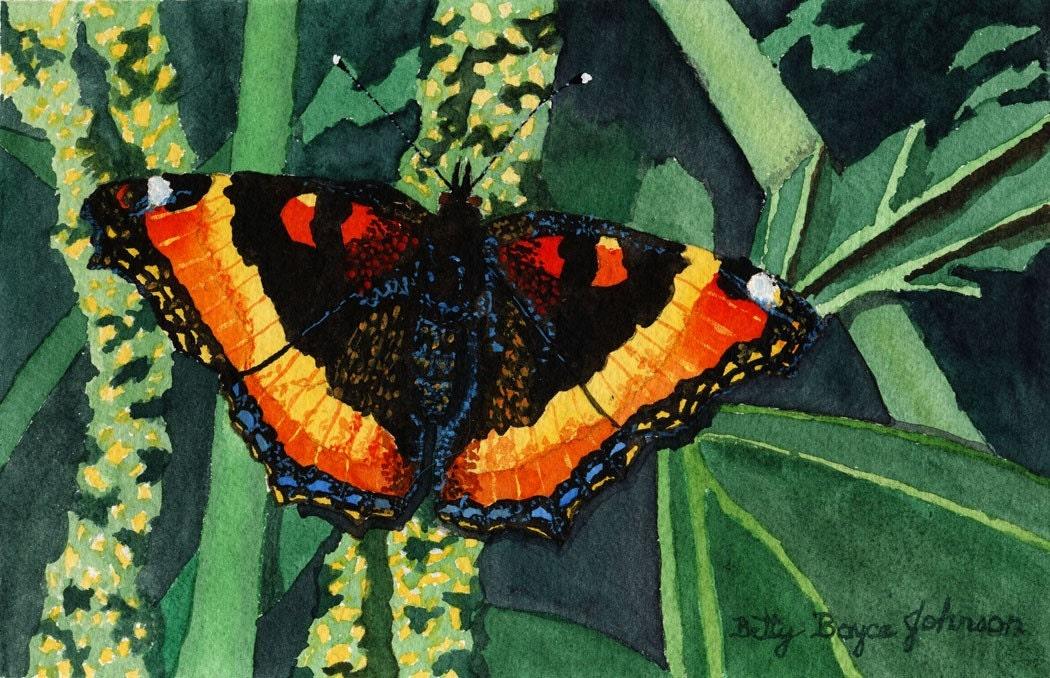 Milbert S Tortoiseshell Butterfly Watercolour Painting