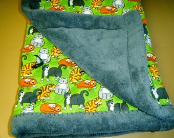 Friendly Kitty Baby or Toddler Quilt made in Minnesota