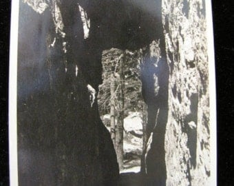 Antique Postcard Tunnel Sylvan Lake Hotel Cody Road Yellowstone Park O'Neill Photo Co