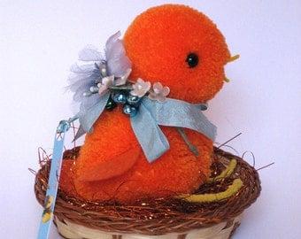 Sweet Orange Chick in his nest
