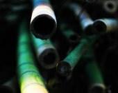 green. original fine art photograph. choose your size.