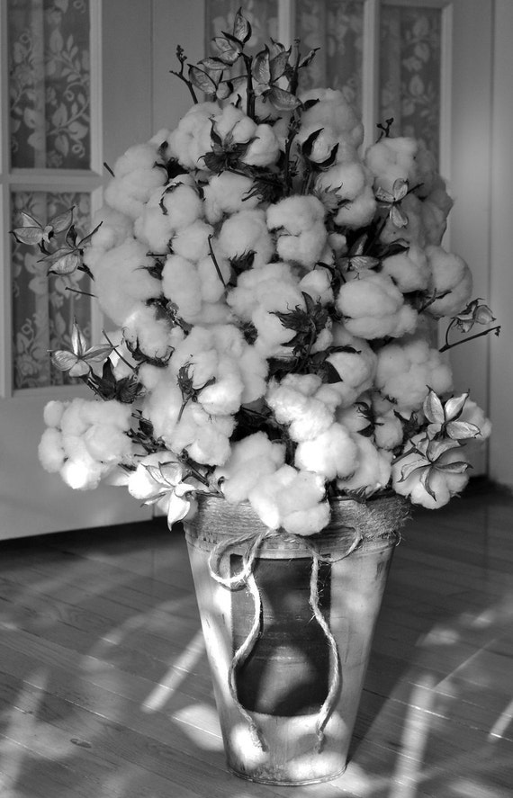 Large Cotton Centerpiece - Natural Cotton Bolls - Raw Cotton - Natural Cotton Branches - Wedding - Home Decor