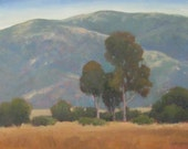 Reserved for Mary M  Jennifer Boswell Original California Impressionist Landscape Oil Painting 16x20