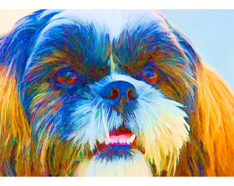 Wildlife Series One: Colorful Shih Tzu