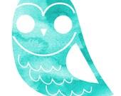 Blue Barn Owl 5x7 Print