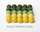Felt Balls wild springtime 20 mm 25 pieces