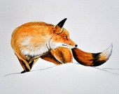 Who's There Said The Fox - Original Painting on Watercolor Paper