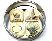 """Vintage Medical  """"Grody Anatomy""""  Glass Magnet Set with Puffy Glass--Set of 4 with FREE gift tin"""
