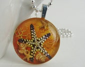 Blue Starfish Pendant with Free Shiny Ball Chain Necklace