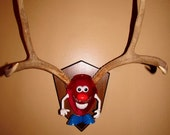 Handmade assemblage Taxidermy deer 4 point buck antler mr antler head mount fitted for your design play pleasure
