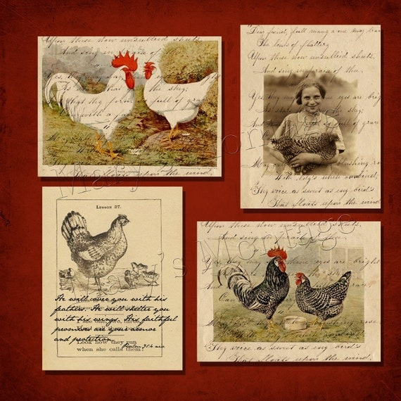 Chicken  Digital Collage sheet/ pack