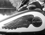Classic Harley Davidson Wings Logo. 8x10 Other sizes available on request.