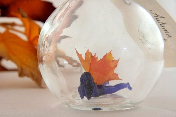 Autumn Sunset Faerie - Bottled Fairy MADE TO ORDER