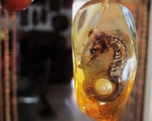 70's Faceted Amber Lucite Pendant with Embedded Seahorse, Seashell and Seaweed - TREASURY ITEM