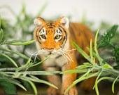 Bengal Tiger Sculpture - Jungle Animals, Wildlife Sculpture, Needle Felted, Tiger Art