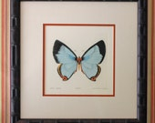 Reserved for Erin - Turquoise Butterfly Etching in Faux Bamboo Frame