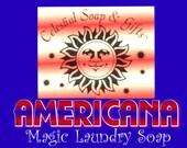 AMERICANA Natural Laundry Soap Powder SAMPLE Vegan 6 oz.  5-10 Loads