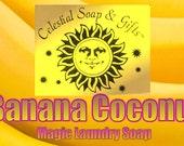 Banana Coconut Natural VEGAN Laundry Soap Powder SAMPLE 6 oz. 5-10 Loads