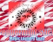 Peppermint Stick Natural VEGAN Laundry Soap Powder SAMPLE 6 oz. 5-10 LOADS