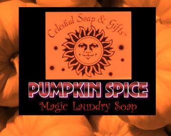 Pumpkin Spice VEGAN Laundry Soap Powder Bag - 40-80 LOADS Gross Wt. 44 oz.