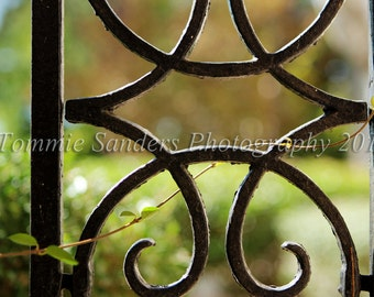 Wrought Iron Spiral Detail Color Digital Photography Instant Download Home Decor Fine Art Photograph