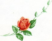 RETIREMENT Card Vintage 1960's Congratulations Card Orange Rose NOS Unused
