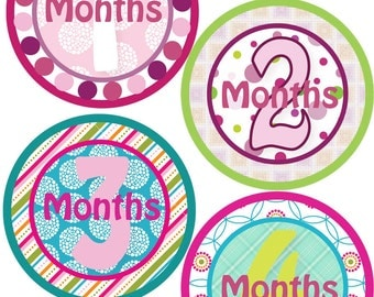 Monthly Bodysuit Stickers - Baby Shower or New Mom gift - For a baby girl 1-12 months