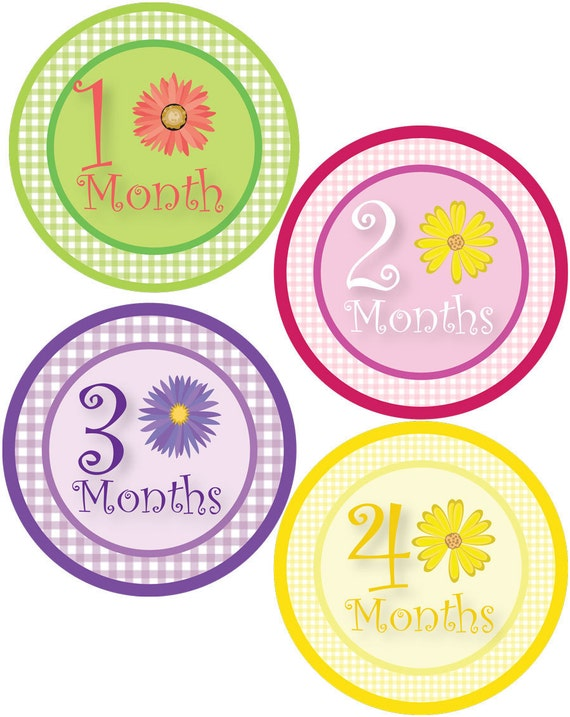 Girl Monthly Stickers for Baby Bodysuit - Gingham & Flowers - Daisy - Baby Shower Gift - Baby Girl 1-12 Months - Waterproof