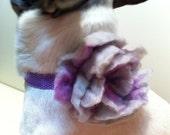 Felt Flower Pet Collar In Lavender Bead Embellishments