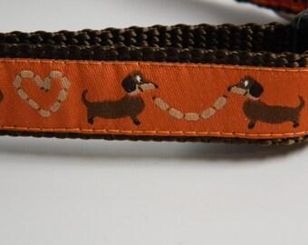 Wiener Dog Collar- Dachshund Hot Dog Love Orange