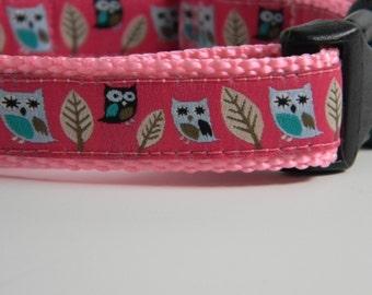 Owl Dog Collar- Night Owls Pink