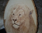 Origional Lion King Pride African Jungle Wooden Sign Cat Zoo