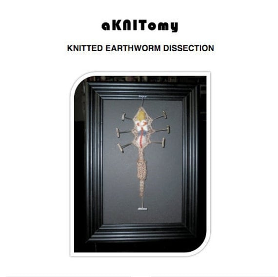 Knitted Earthworm Dissection pattern