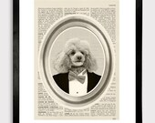 "Poodle in Tuxedo Print - old french page dictionary book - dog illustration 8x10"" - Art Print"