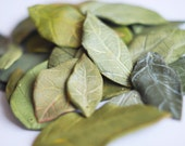20 leaf beads, drilled and painted. For your creativity. Different shades of pastel green
