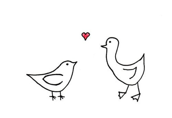 Cute Love Birds Drawings Crazywidow Info